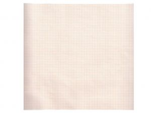GI-32992 - Carta termica ECG 210x30 mmxm - rotolo griglia arancio